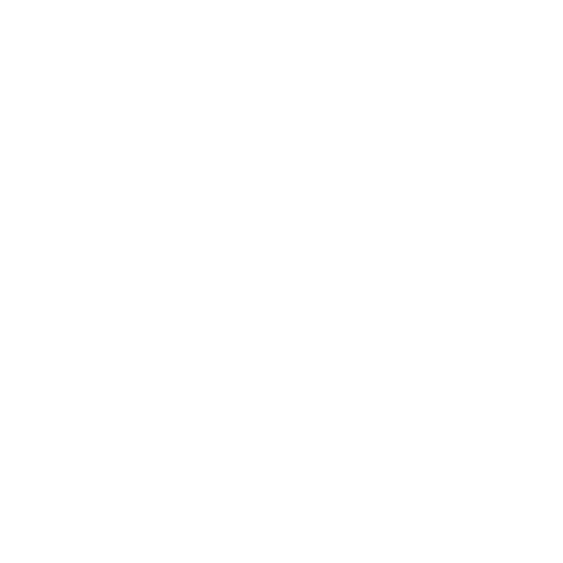 ACE New Zealand logo